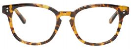 Vaughan in Tabby Tortoise